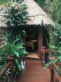 Exploring Paradisus Cancun