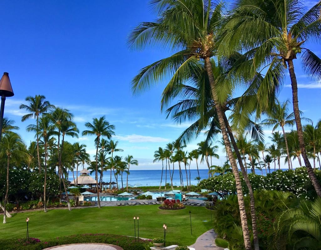 Island of Hawai'i trip with VoX International 2018