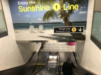 Visit Florida Moments of Sunshine 2019